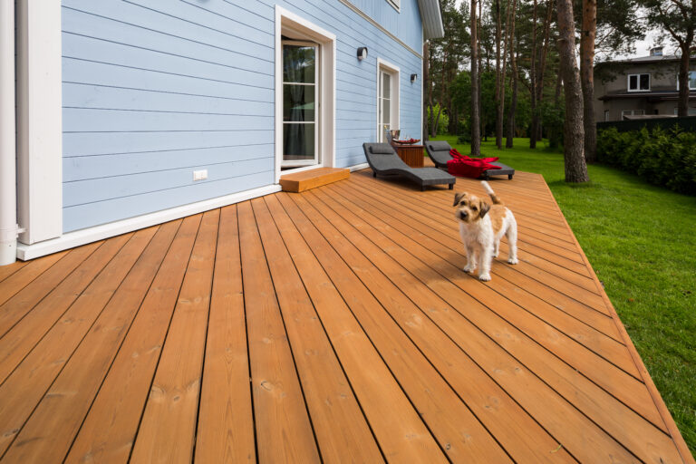 Thermory Decking With Dog